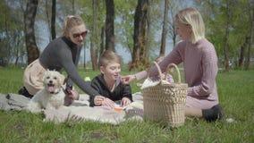 Las madres lindas jovenes del retrato dos con ellos los ni?os se sientan en la manta en parque asombroso verde en la naturaleza e almacen de metraje de vídeo