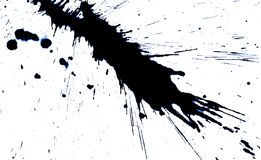Las manchas blancas /negras manchadas. Fotografía de archivo libre de regalías