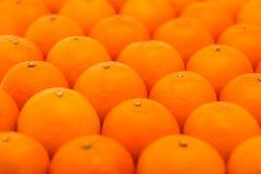 Las mandarinas frescas, jugosas, brillantes fotografiaron con una pequeña profundidad del campo Fotografía de archivo