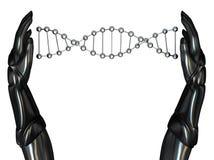 Las manos androides crean la cadena 03 de la DNA Fotos de archivo