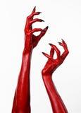 Las manos con los clavos negros, manos rojas de Satanás, tema del diablo rojo de Halloween, en un fondo blanco, aislado Foto de archivo libre de regalías