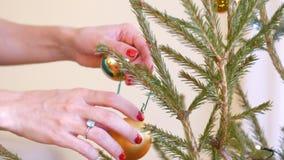 Las manos de la muchacha de la cámara lenta cuelgan la bola del oro en el árbol de navidad metrajes