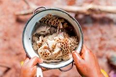 Las manos de la mujer camerunian que sostenían el pote del intestino cocinaron de manera tradicional en cocina del pueblo foto de archivo libre de regalías