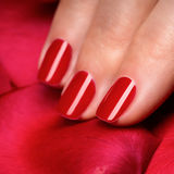 Las manos de la mujer con rojo manicured clavan el primer. Fotografía de archivo libre de regalías
