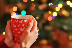 Las manos de la mujer están sosteniendo una taza de té Imagen de archivo libre de regalías