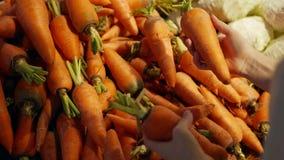 Las manos de la mujer que eligen la zanahoria en el supermercado metrajes