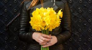 Las manos de la mujer se cierran encima de sostener las flores amarillas de la primavera imagenes de archivo