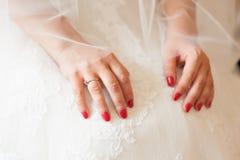 Las manos de la novia hermosa blanda en el primer blanco elegante del vestido de boda Imagen de archivo