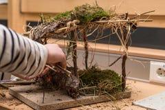 Las manos de los adolescentes hacen un pesebre de la Navidad de ramas y de musgo foto de archivo libre de regalías
