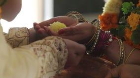 Las manos de los recienes casados del primer sostienen la flor y se limpian con agua