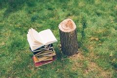 Las manos de madera sostienen un libro acerca de árboles Modelo para su diseño Concepto de tala de árboles imagen de archivo libre de regalías