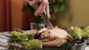 Las manos de un pollo frito cocinado corte de la chica joven Comida, verdes metrajes