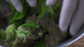 Las manos del cocinero cocinan la ensalada de mezcla en cuenco Cierre vegetariano de la ensalada de la preparación del proceso pa almacen de video