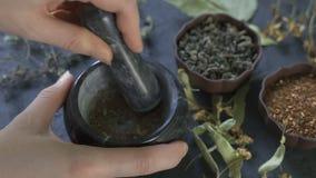 Las manos del cocinero usando un mortero y una maja de piedra para moler con confianza una selección de hierbas y de especias mie almacen de video