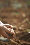 Las manos del granjero que sostienen el suelo en tierra fértil Imagen de archivo