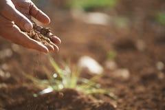 Las manos del granjero que vierten el suelo en tierra Fotografía de archivo
