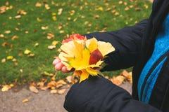 Las manos del otoño en mate imagen de archivo libre de regalías