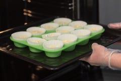 Las manos del ` s del cocinero en guantes transparentes insertan moldes verdes con una pasta de las magdalenas en el horno Fondo  imagen de archivo