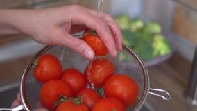 Las manos del ` s de la mujer están lavando los tomates maduros en su cocina