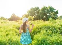 Las manos del ` s de la mujer tocan la hierba de prado al aire libre Foto de archivo libre de regalías