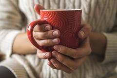 Las manos del ` s de las mujeres en suéter están sosteniendo la taza de café, de chocolate o de té caliente Comodidad del inviern fotografía de archivo libre de regalías