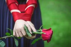 Las manos del ` s de las mujeres sostienen la rosa Foto de archivo libre de regalías