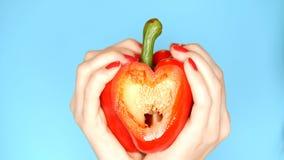 Las manos femeninas con la manicura roja sostienen la pimienta dulce roja a disposici?n bajo la forma de coraz?n en un fondo azul fotos de archivo libres de regalías