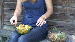 Las manos femeninas del aldeano con el cuchillo limpian setas del mízcalo 4K metrajes