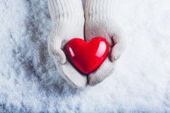 Las manos femeninas en blanco hicieron punto las manoplas con un corazón rojo brillante en un fondo de la nieve Amor y concepto d imagen de archivo libre de regalías