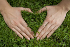 Las manos hacen el corazón en hierba verde Imagenes de archivo