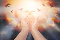 Las manos humanas abren la adoración ascendente de la palma La terapia de la eucaristía bendice a dios él Fotos de archivo libres de regalías