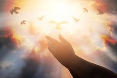 Las manos humanas abren la adoración ascendente de la palma La terapia de la eucaristía bendice a dios él Fotografía de archivo