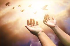 Las manos humanas abren la adoración ascendente de la palma La terapia de la eucaristía bendice a dios él Foto de archivo libre de regalías