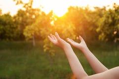 Las manos humanas abren la adoración ascendente de la palma La terapia de la eucaristía bendice a dios él Fotografía de archivo libre de regalías