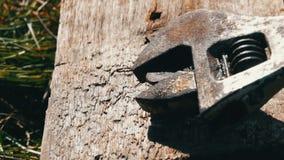 Las manos masculinas aprietan la llave y el tornillo en un cierre del tablero de madera encima de la visión metrajes