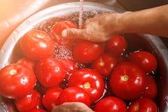 Las manos masculinas lavan los tomates grandes Foto de archivo libre de regalías