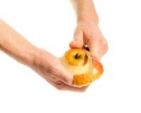 Las manos purificaron la manzana Imágenes de archivo libres de regalías