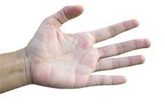 Las manos son mano extendida, humana en el fondo blanco Fotos de archivo libres de regalías
