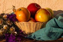 Las manzanas en un florero tejido con el prado florecen en una tabla de madera Imagen de archivo