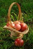Las manzanas están en una cesta Imagen de archivo libre de regalías