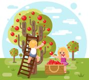 Las manzanas felices de la cosecha de la muchacha del muchacho de los niños del otoño cosechan el ejemplo plano del vector del di Fotografía de archivo