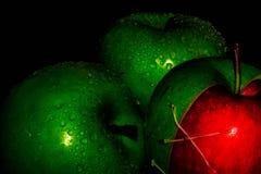 Las manzanas frescas en negro backgroundgreen y Apple rojo en los papeles pintados negros de un fondo, comida sana fotografía de archivo