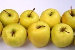 Las manzanas jugosas frescas de la jalea con cortocircuito encresparon los cortes, primer en el top, sobre el fondo blanco Imagen de archivo