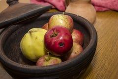 Las manzanas nacionales y otra da fruto ekological Fotos de archivo libres de regalías
