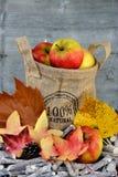 Las manzanas orgánicas en un yute empaquetan con las hojas de otoño Fotos de archivo