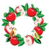 Las manzanas se arreglan en un círculo stock de ilustración