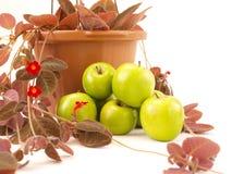 Las manzanas verdes empilaron cerca de las flores y del florero rojos de Brown Foto de archivo