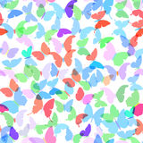 Las mariposas coloridas fijaron el modelo inconsútil del verano en el fondo blanco Vector Fotografía de archivo