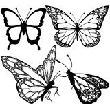 Las mariposas fijaron, monocromo, libro de colorear, ejemplo blanco y negro Fotos de archivo