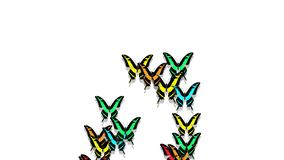 Las mariposas multicoloras animadas llegan, componen una inscripción número 0 almacen de video